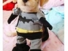 dog-clothes-dog-cosplay-batman-pet-clothes-size-s-m-l-xl-pet-clothes-pet-sport