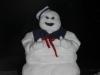 snow_primary