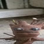 Groot, bloody Groot (d'à peu-près Sepultura ou comment faire son propre Groot trop choupignou  )